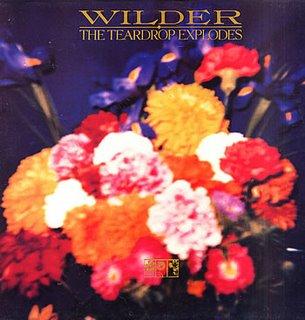Teardrop+Explodes+-+Wilder+(UK)